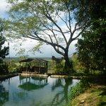 Abeokuta Paradise Nature Park Photo