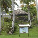 Pavillon with hommocks