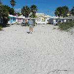 View of cottages taken from the beach