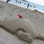we were lucky someone mad this fun turtle in the sand on our last day