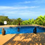 El Bueno Vista Hotel pool