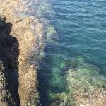 栖原海岸~透明度の高い海岸線