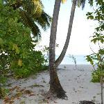 Asdu spiaggia lato est