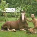 este caballo se llama Bili Ru