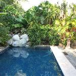 Casa Candiles - Lush foliage surrounds the pool area