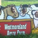 Westmoreland Berry Farm & Market