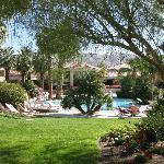 Greenery by the pool at Miracle Springs Hotel and Spa