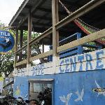 Utila Dive Centre