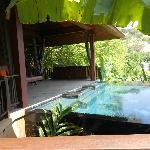 private pool, cliff pool villa