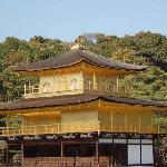 Kyoto gold palace