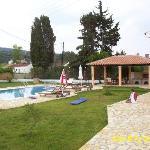 Pool + Terace
