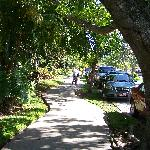 Piste cyclable sur Paseo Xaman-Ha