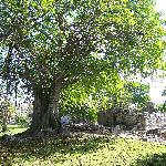 Ruines archéologiques Parc Xaman-Ha