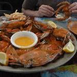 excellent crab