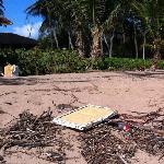 disgusting beach - littered with debris fir three straight days
