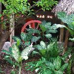Jardin tropical cachant l'espace petit déjeuner