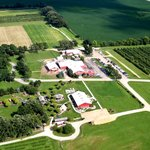 Aerial view of Royal Oak Farm orchard