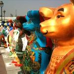 bears in Connaught Place central park