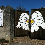 The welcoming gates of the daisy center