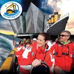 Belfast Sea Safari Day Tours