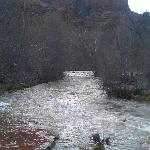 Cathedral Rock from Red Rocks Crossing. It's a short walk to Oak Creek from the Hideaway!