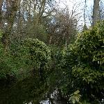 Vue du canal sur la droite