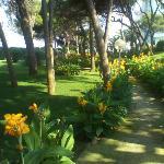 Bild från Grand Hotel Costa Brada
