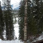 The view from out deck - Caribou