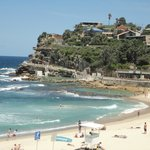 Bondi coastal walk