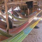 Que delicia dormir en hamaca en el Parque Tayrona y Bucear con ustedes