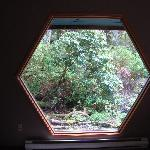 Window in living room