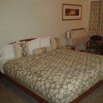 Las camas son grandes y están bien arregladas