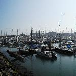 Saint-Vaast-la-Hougue harbor from La Marina