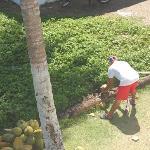 Andres preparing coconuts