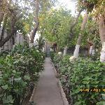 Hotel Nasa Hablod Km 4, Mogadishu-Somalia - Garden restaurant view