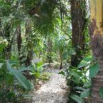 Property path