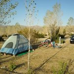 Our campsite on the edge of the grounds