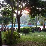 The kids wouldn't wake up to see the sun rise at Angkor Wat, so I watched it rise over the pool.
