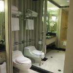 Toilet area of the washroom - floor-to-ceiling mirror