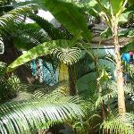 Bungalow en el jardín