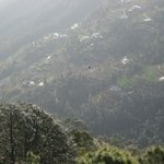 Photo of United 21 Resort Chail