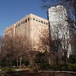新宿中央公園の写真その3