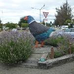 The square at Te Anau