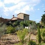 Photo of Il Vallone di Cecione
