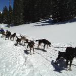 Taking a CoolDown Break on the Trail
