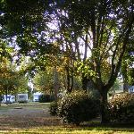 General view of campsite