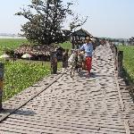El Puente de Teca