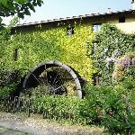 Bilde fra Molino del Torchio