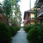 Path to vila