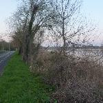 Walk along the river
